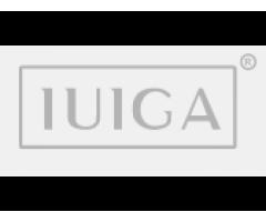 IUIGA